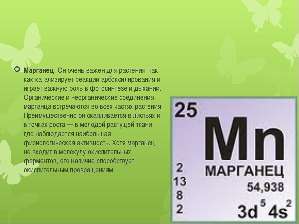 Марганец. Он очень важен для растения, так как катализирует реакции арбоксили...