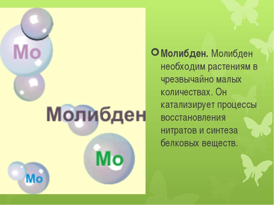 Молибден. Молибден необходим растениям в чрезвычайно малых количествах. Он ка...