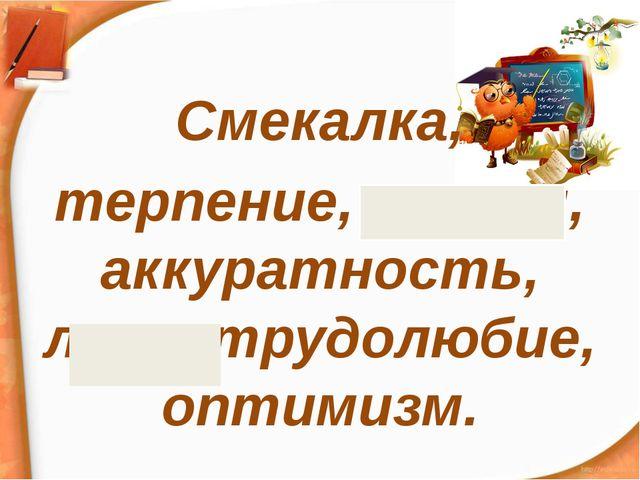 Смекалка, терпение, эгоизм, аккуратность, лень, трудолюбие, оптимизм.