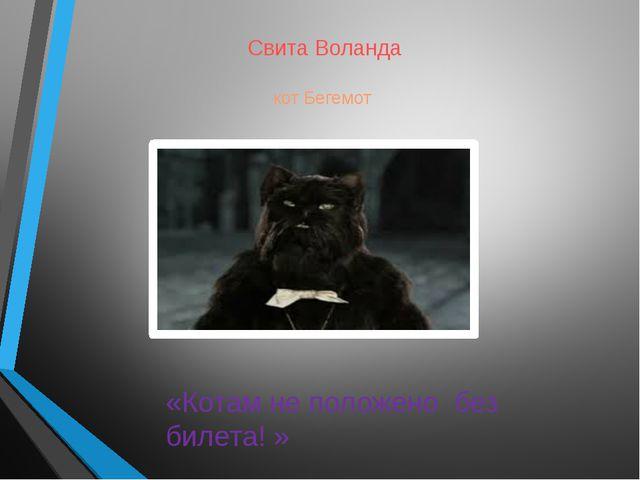 Свита Воланда кот Бегемот «Котам не положено без билета! »
