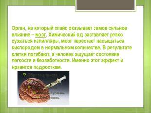 Орган, на который спайс оказывает самое сильное влияние – мозг. Химический яд