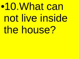 10.What can not live inside the house?