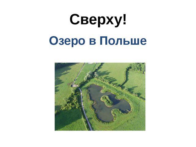 Сверху! Озеро в Польше