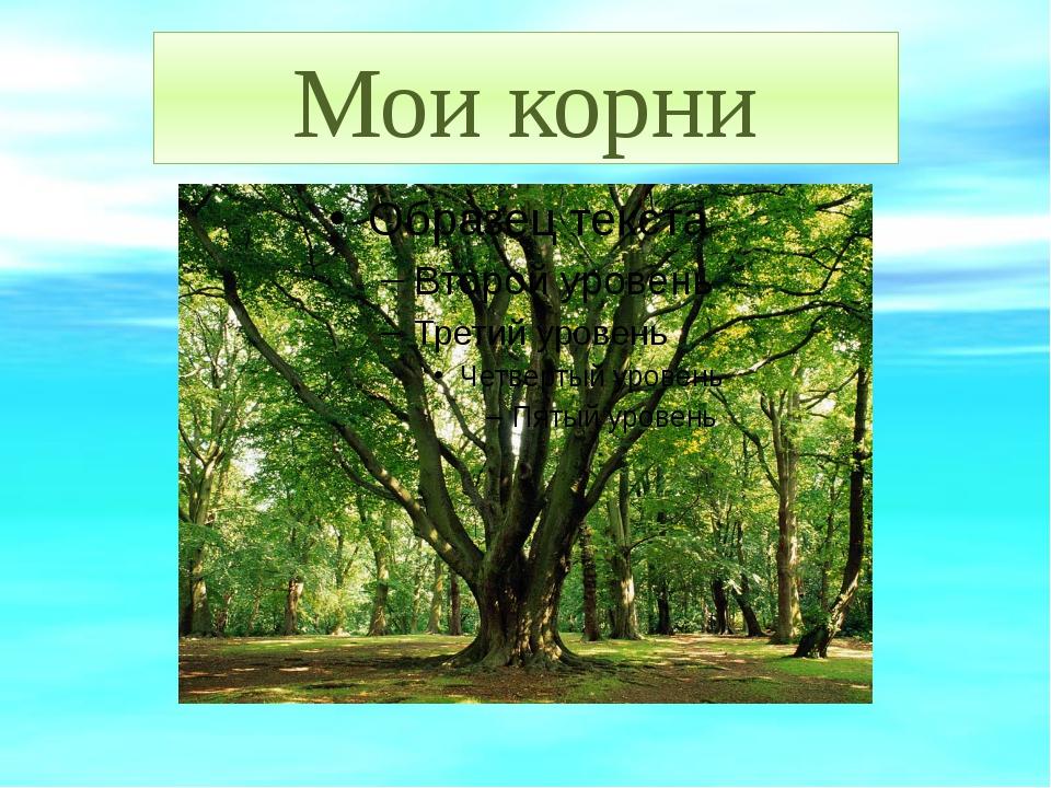 Мои корни