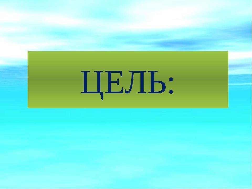 ЦЕЛЬ: