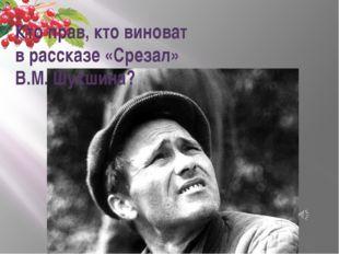Кто прав, кто виноват в рассказе «Срезал» В.М. Шукшина?