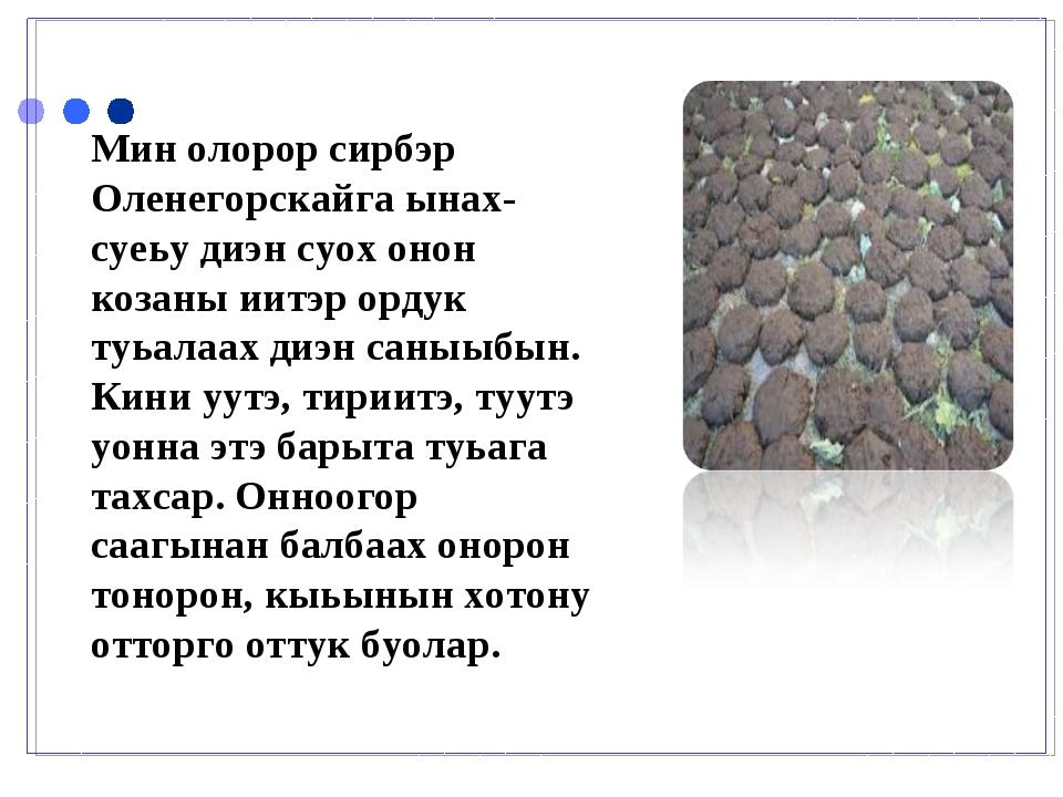 Мин олорор сирбэр Оленегорскайга ынах-суеьу диэн суох онон козаны иитэр ордук...