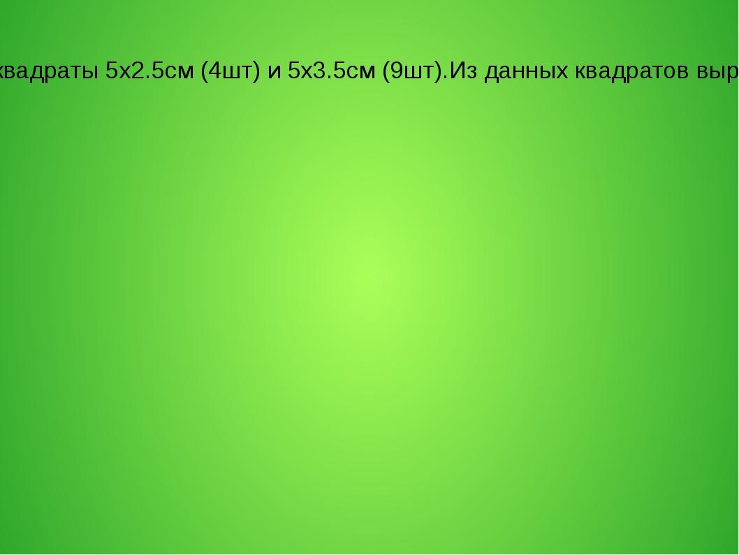 Гофрированную бумагу режем на квадраты 5х2.5см (4шт) и 5х3.5см (9шт).Из данны...