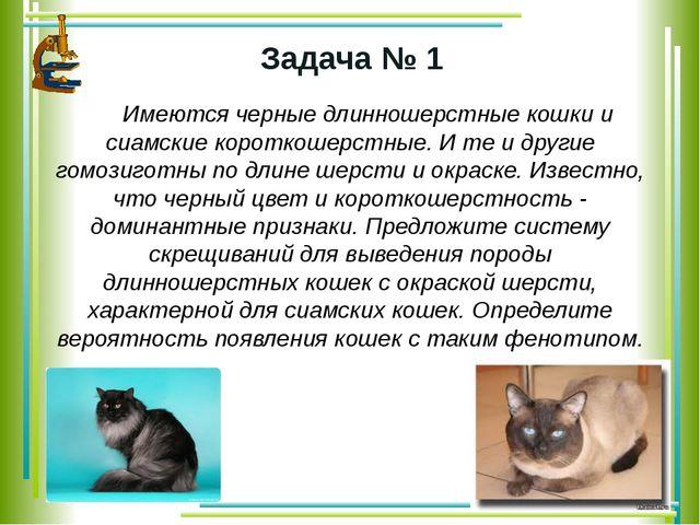 Задача № 1 Имеются черные длинношерстные кошки и сиамские короткошерстные. И...