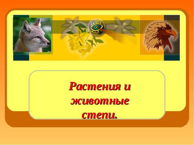 Растения и животные степи.
