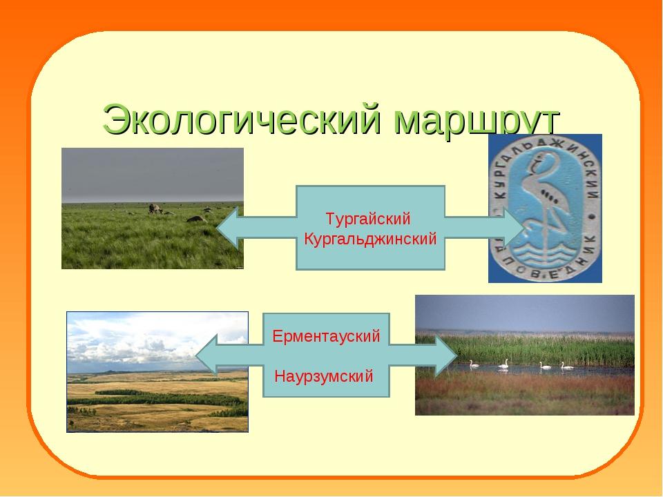 Экологический маршрут Тургайский Кургальджинский Ерментауский Наурзумский