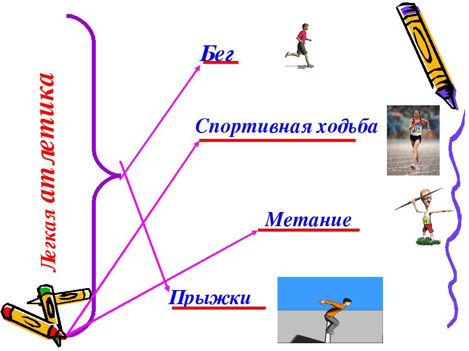 Легкая атлетика Прыжки Метание Спортивная ходьба Бег