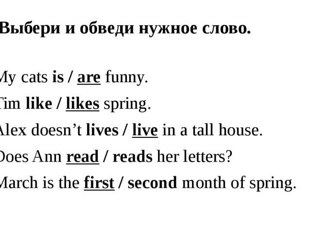 2. Выбери и обведи нужное слово. Му cats is / are funny. Tim like / likes spr...
