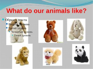 What do our animals like?