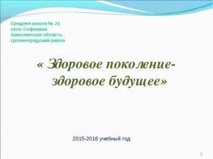 Средняя школа № 21 село Софиевка Акмолинская область Целиноградский район « З
