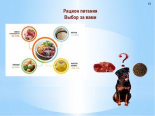 Рацион питания Выбор за вами 19