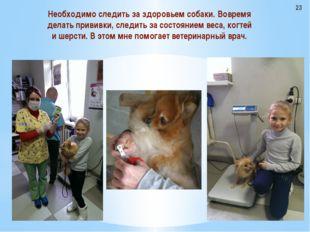 Необходимо следить за здоровьем собаки. Вовремя делать прививки, следить за с