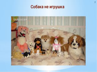 Собака не игрушка 7