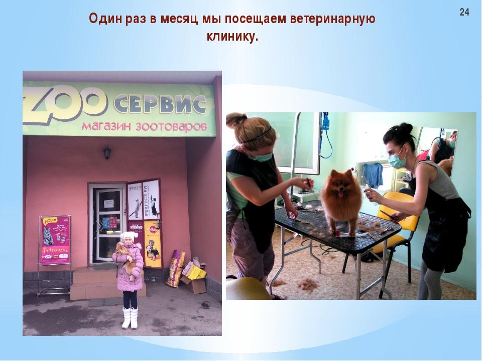 Один раз в месяц мы посещаем ветеринарную клинику. 24