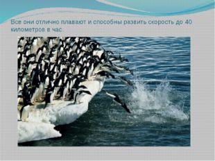Все они отлично плавают и способны развить скорость до 40 километров в час.