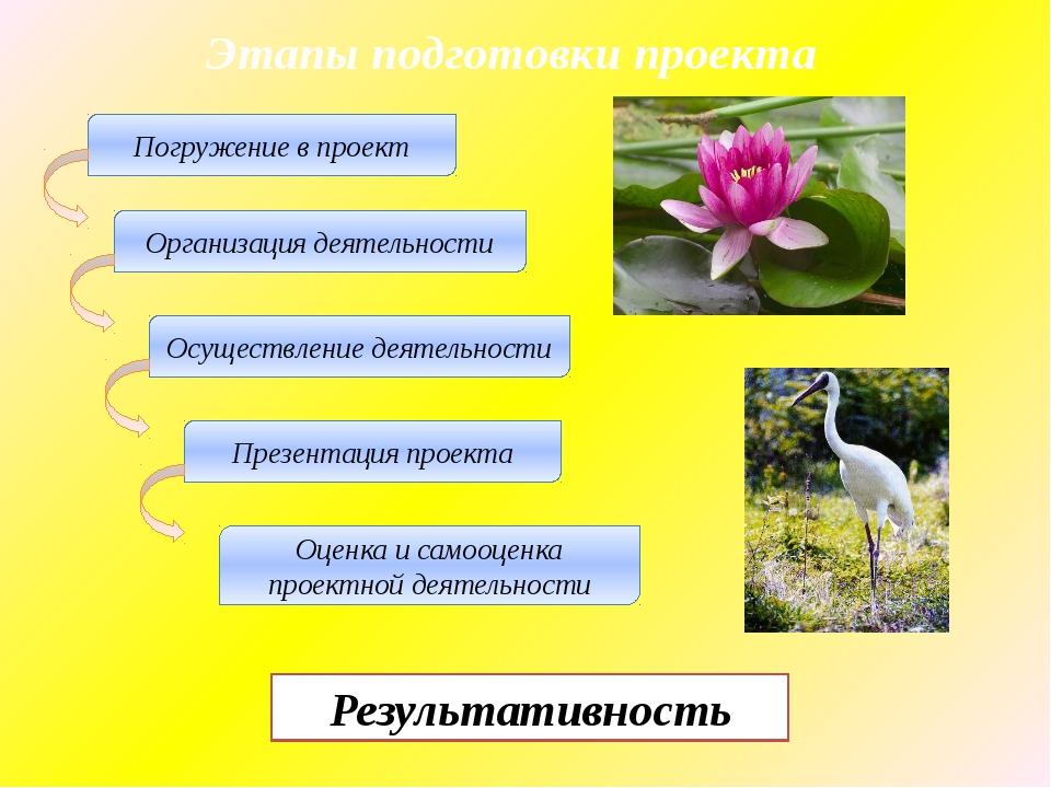 Этапы подготовки проекта Погружение в проект Организация деятельности Осущест...