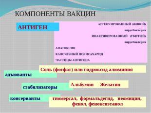 КОМПОНЕНТЫ ВАКЦИН АТТЕНУИРОВАННЫЙ (ЖИВОЙ) вирус/бактерия ИНАКТИВИРОВАННЫЙ (УБ