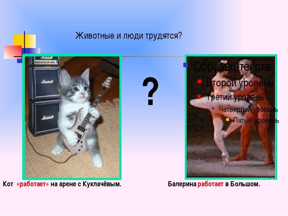 ? Балерина работает в Большом. Кот «работает» на арене с Куклачёвым. Животны...