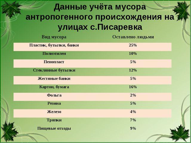 Данные учёта мусора антропогенного происхождения на улицах с.Писаревка Вид му...
