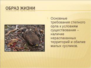 Основные требования степного орла к условиям существования – наличие нераспах