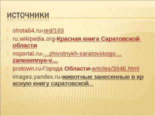 ohota64.ru›red/183 ru.wikipedia.org›КраснаякнигаСаратовскойобласти nsporta