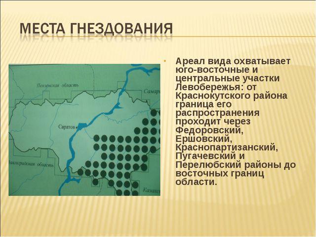 Ареал вида охватывает юго-восточные и центральные участки Левобережья: от Кра...