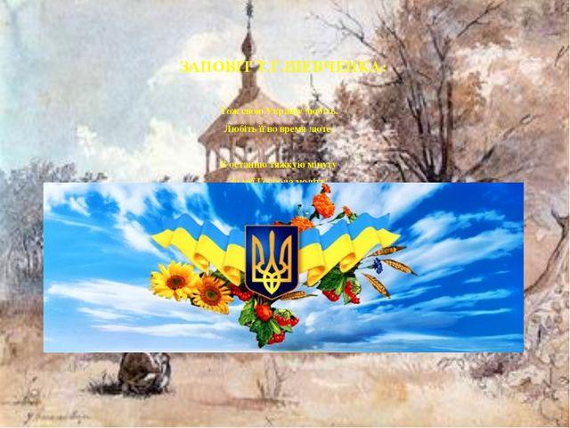 ЗАПОВІТ Т.Г.ШЕВЧЕНКА: Тож свою Україну любіть. Любіть її во время люте. В ост...