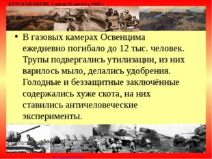 В газовых камерах Освенцима ежедневно погибало до 12 тыс. человек. Трупы подв
