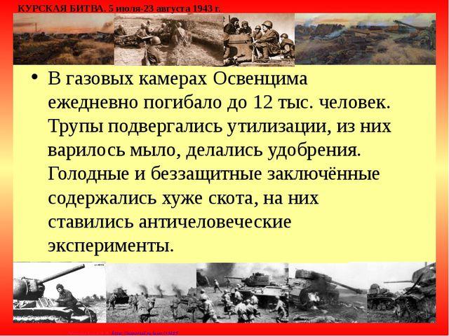 В газовых камерах Освенцима ежедневно погибало до 12 тыс. человек. Трупы подв...