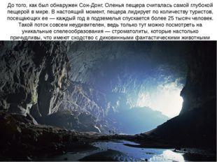 До того, как был обнаружен Сон-Донг, Оленья пещера считалась самой глубокой п