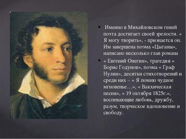 Именно в Михайловском гений поэта достигает своей зрелости. « Я могу творить...