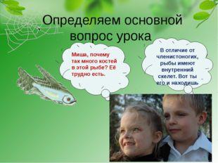 Определяем основной вопрос урока Миша, почему так много костей в этой рыбе?