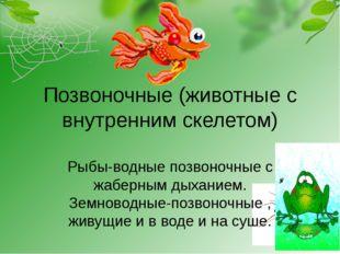 Позвоночные (животные с внутренним скелетом) Рыбы-водные позвоночные с жаберн