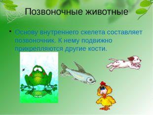 Позвоночные животные Основу внутреннего скелета составляет позвоночник. К нем