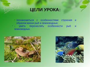 ЦЕЛИ УРОКА: познакомиться с особенностями строения и образом жизни рыб и земн