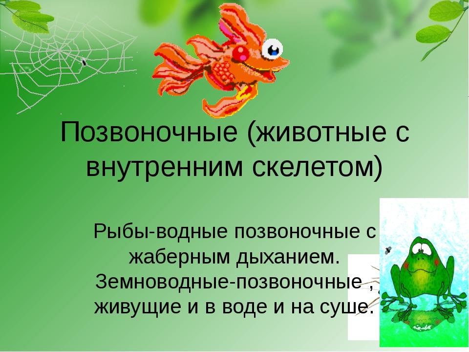 Позвоночные (животные с внутренним скелетом) Рыбы-водные позвоночные с жаберн...