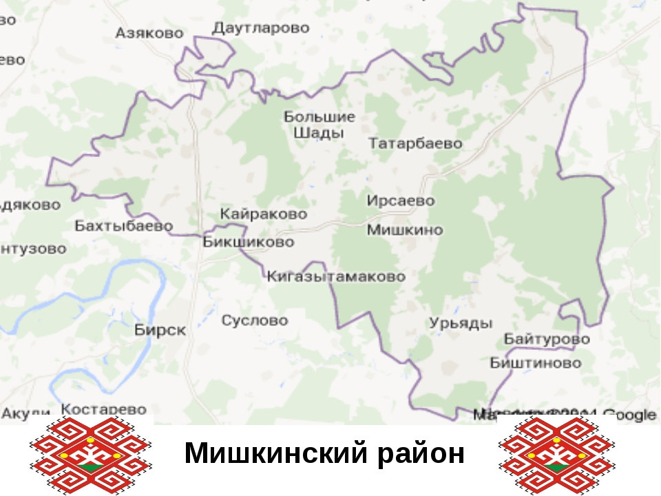 Мишкинский район