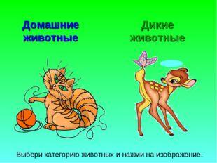 Домашние животные Дикие животные Выбери категорию животных и нажми на изображ