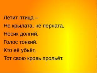 Летит птица – Не крылата, не перната, Носик долгий,  Голос тонкий. Кто её