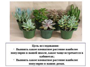 Цель исследования: Выявить какое комнатное растение наиболее популярно в наше