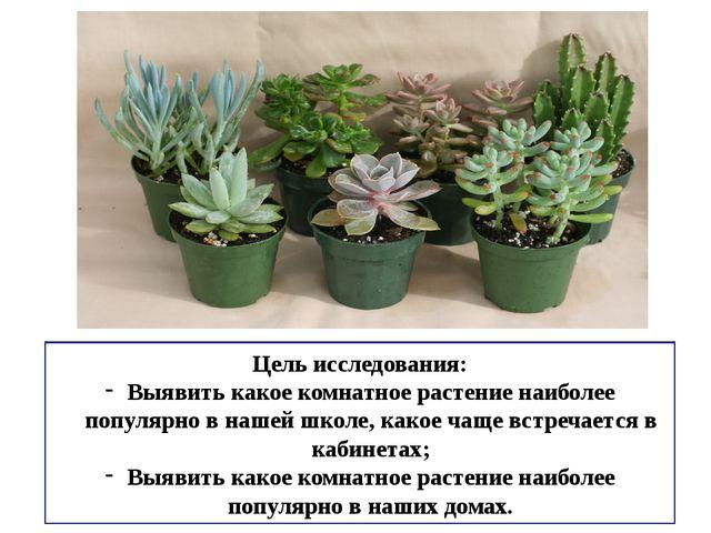 Цель исследования: Выявить какое комнатное растение наиболее популярно в наше...