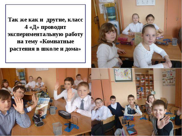 Так же как и другие, класс 4 «Д» проводит экспериментальную работу на тему «К...