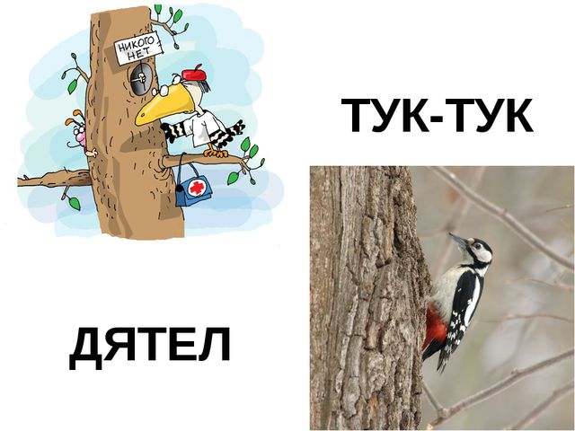 ДЯТЕЛ ТУК-ТУК