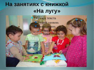 На занятиях с книжкой «На лугу»