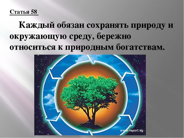 Статья 58 Каждый обязан сохранять природу и окружающую среду, бережно относи...